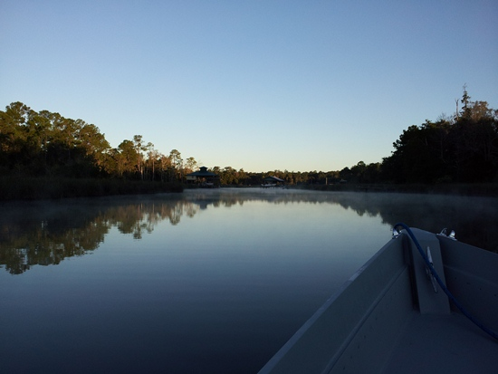 Nolte Creek 2011-10-02